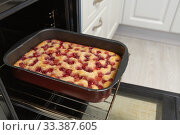 Купить «Baked cherry pie on a baking sheet in the oven», фото № 33387605, снято 11 марта 2020 г. (c) Володина Ольга / Фотобанк Лори