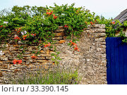 The facade of the house with crick wall, blue door and red and orange flowers. Стоковое фото, фотограф Zoonar.com/Morad HEGUI / easy Fotostock / Фотобанк Лори