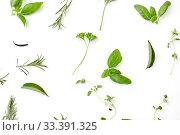 Купить «greens, spices or herbs on white background», фото № 33391325, снято 12 июля 2018 г. (c) Syda Productions / Фотобанк Лори
