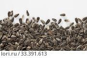 Купить «Sunflower seeds on a white surface», фото № 33391613, снято 2 июня 2020 г. (c) Яков Филимонов / Фотобанк Лори