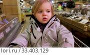 Купить «Toddler in warm jacket in supermarket», видеоролик № 33403129, снято 19 ноября 2019 г. (c) Ekaterina Demidova / Фотобанк Лори