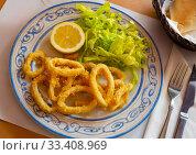 Купить «Crispy squid rings in batter Roman style. Traditional spanish dish», фото № 33408969, снято 9 апреля 2020 г. (c) Яков Филимонов / Фотобанк Лори