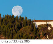 Full moon setting over a wooded ridge in the Lamar Valley, Yellowstone National Park, Wyoming, USA, June 2019. Стоковое фото, фотограф Mike Read / Nature Picture Library / Фотобанк Лори
