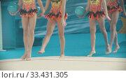 Купить «Young women legs at the rhythmic gymnastics tournament - walking out on the stage holding balls», видеоролик № 33431305, снято 27 мая 2020 г. (c) Константин Шишкин / Фотобанк Лори