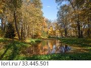 """Купить «Музей-усадьба """"Ясная Поляна"""" осенью. Водный пейзаж с видом на маленький пруд ясным днём», эксклюзивное фото № 33445501, снято 3 октября 2019 г. (c) Игорь Низов / Фотобанк Лори"""