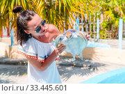 Купить «Small sea turtle looking from the water», фото № 33445601, снято 10 апреля 2017 г. (c) Дмитрий Травников / Фотобанк Лори