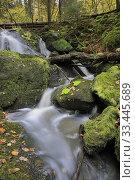 Купить «Brinkfallet, Grodinge, Sodermanland, Sweden.», фото № 33445689, снято 15 октября 2019 г. (c) age Fotostock / Фотобанк Лори