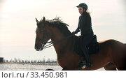 Купить «Horse riding - young woman horsewoman is galloping on horseback on snow field», видеоролик № 33450981, снято 4 июня 2020 г. (c) Константин Шишкин / Фотобанк Лори