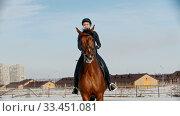 Купить «Horse riding - woman rider in black clothes galloping on a horse on a snow field», видеоролик № 33451081, снято 4 июня 2020 г. (c) Константин Шишкин / Фотобанк Лори
