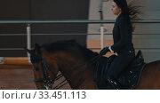 Купить «Hippodrome - a horsewoman riding a horse rides along a hippodrome», видеоролик № 33451113, снято 4 июня 2020 г. (c) Константин Шишкин / Фотобанк Лори