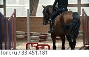 Купить «Young woman riding a horse on the indoors hippodrome», видеоролик № 33451181, снято 4 июня 2020 г. (c) Константин Шишкин / Фотобанк Лори