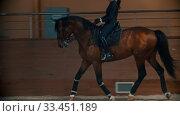 Купить «Young woman with long hair riding a brown horse around the arena of hippodrome», видеоролик № 33451189, снято 4 июня 2020 г. (c) Константин Шишкин / Фотобанк Лори