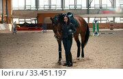 Купить «Hippodrome - young and beautiful woman standing next to her horse and holding a helmet in her hands», видеоролик № 33451197, снято 4 июня 2020 г. (c) Константин Шишкин / Фотобанк Лори