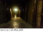 Купить «Old tunnel in mountain mine», фото № 33452205, снято 1 июля 2020 г. (c) Яков Филимонов / Фотобанк Лори