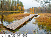 Купить «Autumn landscape with wooden jetty, forest and lake in Finland», фото № 33461605, снято 2 апреля 2020 г. (c) easy Fotostock / Фотобанк Лори