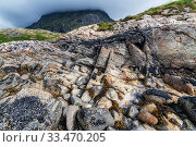 Купить «Coastal landscape with marble formations. Tomma Island, Helgeland Archipelago, Norway. July.», фото № 33470205, снято 3 июня 2020 г. (c) Nature Picture Library / Фотобанк Лори