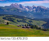 Alpine meadow landscape - Seiser Alm with mountains of Langkofel Group in the background. Dolomoites, South Tyrol, Italy. July 2019. Стоковое фото, фотограф Ernie  Janes / Nature Picture Library / Фотобанк Лори