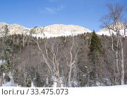 Купить «Beautiful mountains covered with snow. Sunny day and blue sky on a frosty day», фото № 33475073, снято 5 марта 2019 г. (c) Олег Хархан / Фотобанк Лори