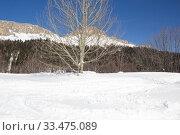 Купить «Beautiful mountains covered with snow. Sunny day and blue sky on a frosty day», фото № 33475089, снято 5 марта 2019 г. (c) Олег Хархан / Фотобанк Лори