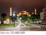 Купить «View of the Hagia Sophia at night in Istanbul, Turkey», фото № 33480049, снято 16 мая 2015 г. (c) Наталья Волкова / Фотобанк Лори