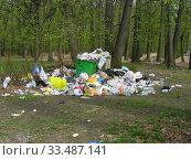 Купить «Свалка мусора в заповеднике Лосиный остров. Район Гольяново. Город Москва. Россия», эксклюзивное фото № 33487141, снято 8 мая 2011 г. (c) lana1501 / Фотобанк Лори
