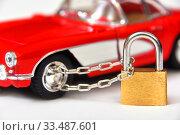 Купить «Защита автомобиля от угона», фото № 33487601, снято 9 марта 2019 г. (c) Юрий Морозов / Фотобанк Лори