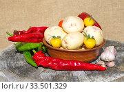 Натюрморт из свежих овощей с огорода на старом пне. Стоковое фото, фотограф Елена Коромыслова / Фотобанк Лори