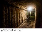 Купить «Old tunnel in mountain mine», фото № 33501697, снято 1 июля 2020 г. (c) Яков Филимонов / Фотобанк Лори