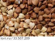 Купить «Solid background of raw and fried buckwheat macro», фото № 33507209, снято 7 апреля 2020 г. (c) ok_fotoday / Фотобанк Лори