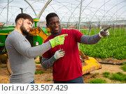 Купить «Two positive farmers break in between work», фото № 33507429, снято 5 августа 2020 г. (c) Яков Филимонов / Фотобанк Лори
