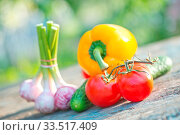 Купить «Raw vegetables on a table in the garden», фото № 33517409, снято 9 апреля 2020 г. (c) age Fotostock / Фотобанк Лори