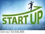 Купить «Concept of green start-up and venture capital», фото № 33536405, снято 24 мая 2020 г. (c) Elnur / Фотобанк Лори