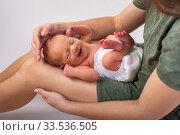 Beautiful new born baby resting on mom's hands. Стоковое фото, фотограф Василий Кочетков / Фотобанк Лори