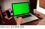 Купить «Woman hand using laptop with key green screen», видеоролик № 33559393, снято 14 апреля 2020 г. (c) Ekaterina Demidova / Фотобанк Лори