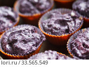 Купить «Prepare gluten free blueberries muffin. Raw lilac dough in baking tins», фото № 33565549, снято 6 июня 2017 г. (c) Ирина Мойсеева / Фотобанк Лори