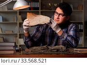 Купить «Archeologist working late night in office», фото № 33568521, снято 28 мая 2020 г. (c) easy Fotostock / Фотобанк Лори
