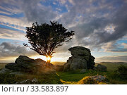 Saddle Tor at sunset, Dartmoor National Park, Devon, England, UK, August 2005. Стоковое фото, фотограф Guy Edwardes / Nature Picture Library / Фотобанк Лори