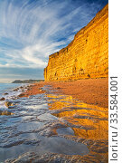 Sandstone cliffs at Burton Bradstock, Jurassic Coast World Heritage Site, Dorset, England, UK, November 2008. Стоковое фото, фотограф Guy Edwardes / Nature Picture Library / Фотобанк Лори