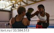 Купить «Two mixed race women training in boxing ring», видеоролик № 33584513, снято 15 мая 2019 г. (c) Wavebreak Media / Фотобанк Лори