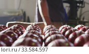 Купить «Front view of handmade cricket ball in factory», видеоролик № 33584597, снято 23 мая 2019 г. (c) Wavebreak Media / Фотобанк Лори