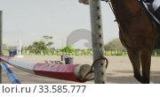 Купить «African American man jumping an obstacle with his Dressage horse», видеоролик № 33585777, снято 27 сентября 2019 г. (c) Wavebreak Media / Фотобанк Лори