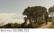 Active senior couple looking map in forest. Стоковое видео, агентство Wavebreak Media / Фотобанк Лори