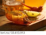 Купить «Crayfish with beer on a wooden table», фото № 33613913, снято 20 апреля 2020 г. (c) Марина Володько / Фотобанк Лори