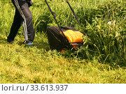 Купить «Человек косит газонокосилкой высокую траву на дачном участке», эксклюзивное фото № 33613937, снято 29 мая 2010 г. (c) Щеголева Ольга / Фотобанк Лори
