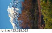 Купить «Vertical video mountain landscape, autumn view of cone active volcano, yellow-orange trees in forest at foot of mountain massif», видеоролик № 33628033, снято 31 мая 2020 г. (c) А. А. Пирагис / Фотобанк Лори