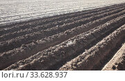Купить «Closeup of plowed soil with furrows. Spring agricultural work, preparation for seeding», видеоролик № 33628937, снято 5 февраля 2020 г. (c) Яков Филимонов / Фотобанк Лори