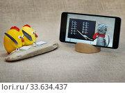 Купить «Игрушки. Дистанционное обучение», эксклюзивное фото № 33634437, снято 25 апреля 2020 г. (c) Dmitry29 / Фотобанк Лори