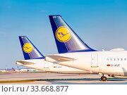 Die Flotte der deutschen Lufthansa geparkt auf der Landebahn Nordwest am Flughafen Frankfurt am Main aufgrund der Corona-Pandemie. Стоковое фото, фотограф Zoonar.com/Michel Lask / age Fotostock / Фотобанк Лори