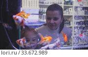 Купить «View through aquarium glass of young woman with little girl looking at colorful tropical fish in pet shop», видеоролик № 33672989, снято 3 июня 2020 г. (c) Яков Филимонов / Фотобанк Лори
