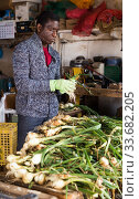 African American farmer sorting green onions. Стоковое фото, фотограф Яков Филимонов / Фотобанк Лори